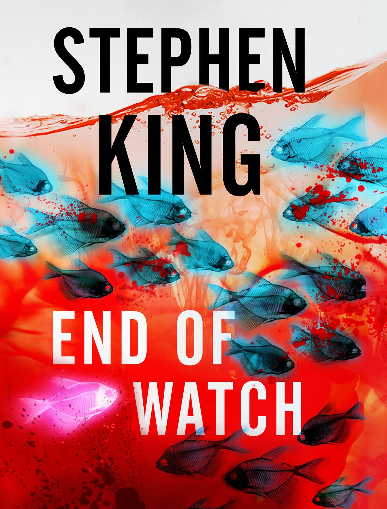 Обложка книги «Конец стражи»